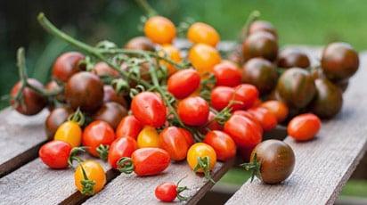 Як довго зберігати томати свіжими