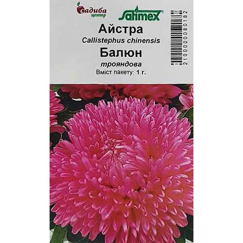 Астра Баллон розовая Садыба центр рисунок 1 артикул 89010