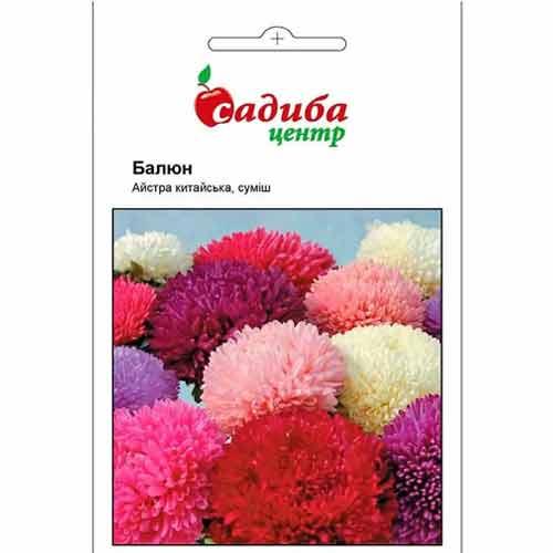 Астра Баллон, смесь окрасок Садыба центр рисунок 1 артикул 89014