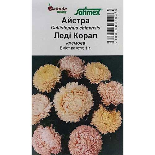 Астра Леди Корал кремовая Садыба центр рисунок 1 артикул 89036