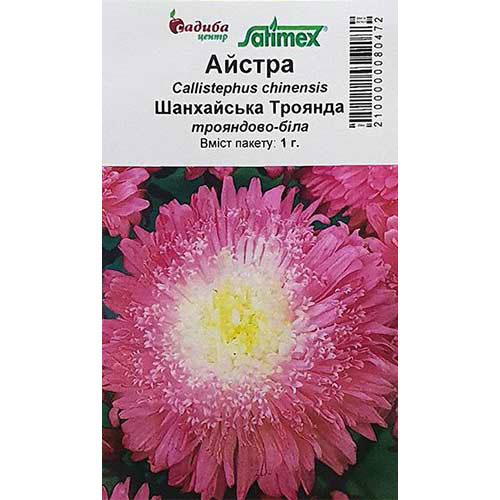 Астра Шанхайская Роза розово-белая Садыба центр рисунок 1 артикул 89063