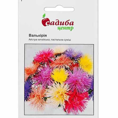 Астра Валькирия пастельная, смесь окрасок Садыба центр рисунок 1 артикул 89020