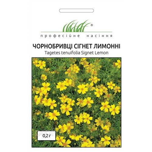 Чорнобривці Сігнет лимонні Професійне насіння зображення 1 артикул 72687