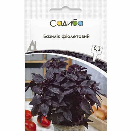 Базилик Фиолетовый Садыба центр рисунок 1 артикул 89099