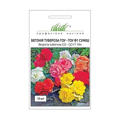 Бегонія Гоу-Гоу F1, суміш забарвлень Професійне насіння зображення 1 артикул 66205