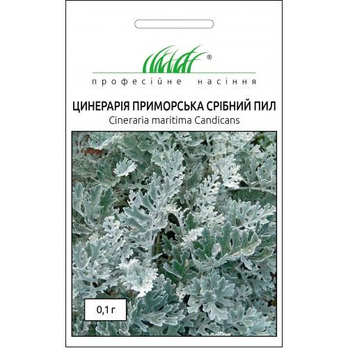 Цинерарія Срібний пил Професійне насіння зображення 1 артикул 72663