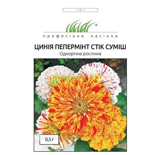 Цинія Пепермінт стік, суміш забарвлень Професійне насіння зображення 1 артикул 72667