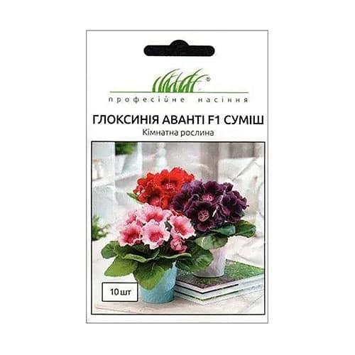 Глоксиния Аванти F1, смесь окрасок Профессиональные семена рисунок 1 артикул 66302