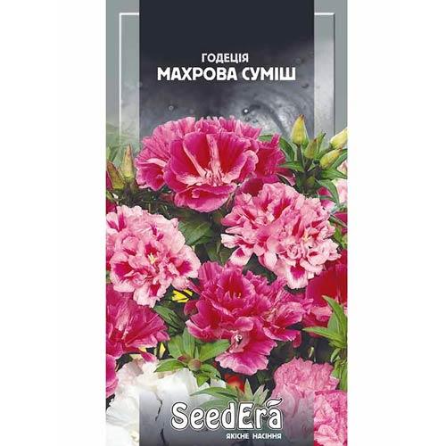 Годеція махрова, суміш забарвлень Seedera зображення 1 артикул 66401
