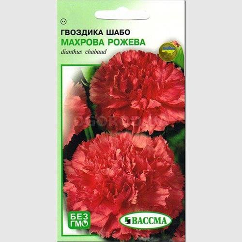 Гвоздика махровая Шабо розовая Seedera рисунок 1 артикул 89927