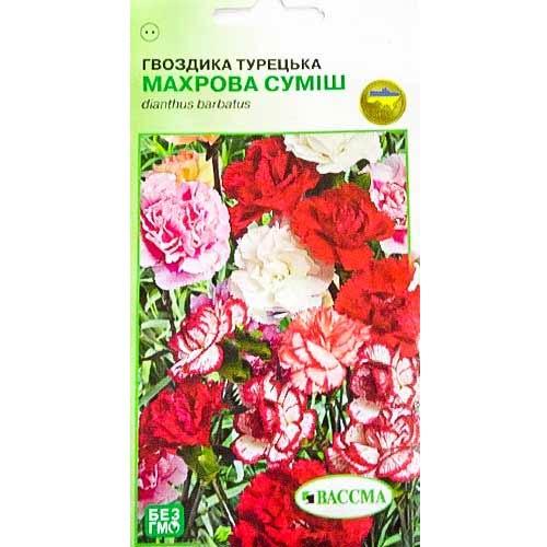 Гвоздика махровая Турецкая, смесь окрасок Seedera рисунок 1 артикул 89926