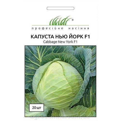 Капуста белокочанная Нью Йорк F1 Профессиональные семена рисунок 1 артикул 90336