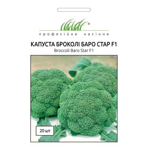 Капуста броколі Баро Стар F1 Професійне насіння зображення 1 артикул 72232