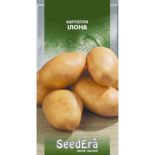 Картофель Илона Seedera рисунок 1 артикул 77216
