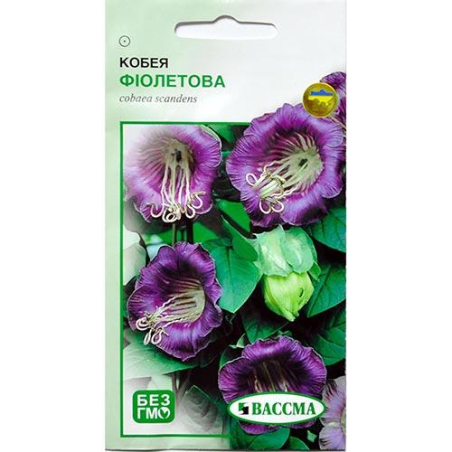 Кобея фіолетова Seedera зображення 1 артикул 72268