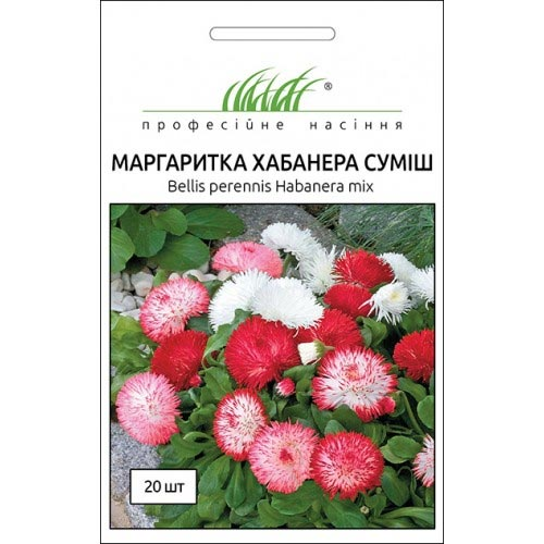 Маргаритка Хабанера, суміш забарвлень Професійне насіння зображення 1 артикул 72332