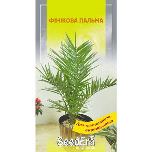Фінікова пальма Seedera зображення 1 артикул 72628
