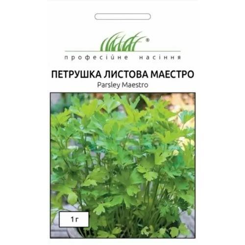 Петрушка листовая Маэстро Профессиональные семена рисунок 1 артикул 65495