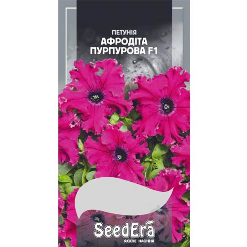 Петуния Афродита пурпурная F1 Seedera рисунок 1 артикул 77074