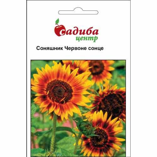 Подсолнечник Красное Солнце Садыба центр рисунок 1 артикул 89692