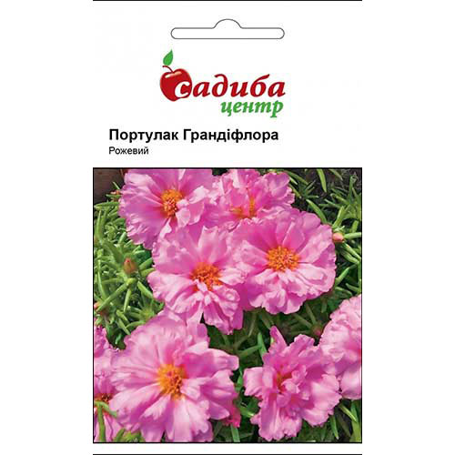 Портулак Грандифлора розовый Садыба центр рисунок 1 артикул 89626