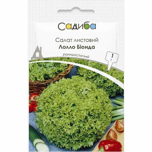 Салат листовой Лолло Бионда Садыба центр рисунок 1 артикул 89670