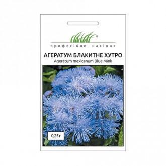 Агератум Блакитне хутро Професійне насіння зображення 6