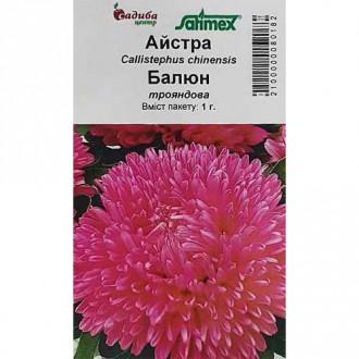 Астра Баллон розовая Садыба центр рисунок 4