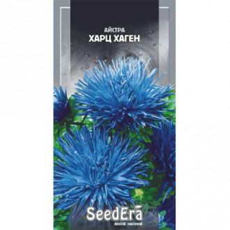 Астра Харц, смесь окрасок Seedera рисунок 7