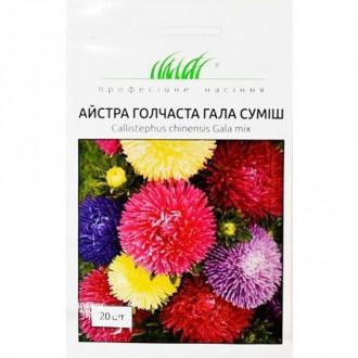 Айстра Гала, суміш забарвлень Професійне насіння зображення 8