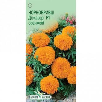 Бархатцы Дискавери оранжевые F1 Элитсорт рисунок 7