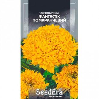 Бархатцы Фантастик оранжевые Seedera рисунок 6