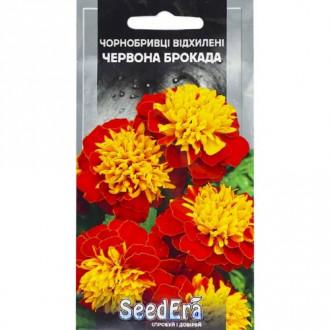 Чорнобривці Червона Брокада Seedera зображення 7