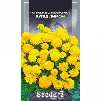 Чорнобривці Купід лимон Seedera зображення 1