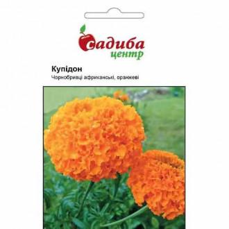 Чорнобривці Купідон оранжеві Садиба центр зображення 7
