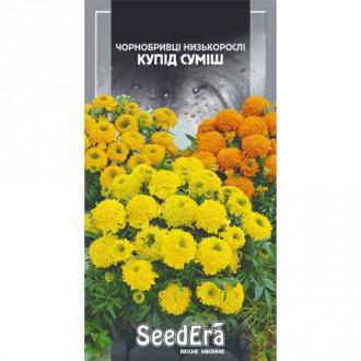Чорнобривці високорослі, суміш Seedera зображення 3