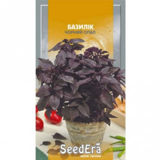 Базилік Чорний опал Seedera зображення 7