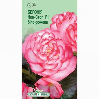 Бегония Нон-стоп бело-розовая F1 Элитсорт рисунок 4