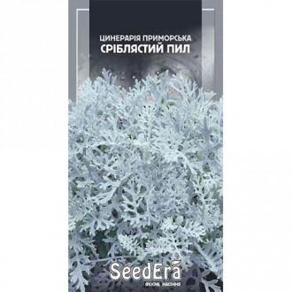 Цинерарія приморська Сріблястий пил Seedera зображення 1