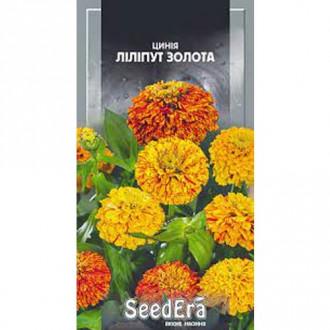 Цинния Кактусовая, смесь окрасок Seedera рисунок 8