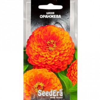 Цинния оранжевая Seedera рисунок 6