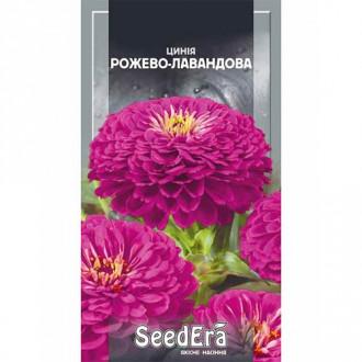 Цинния розово-лавандовая Seedera рисунок 8