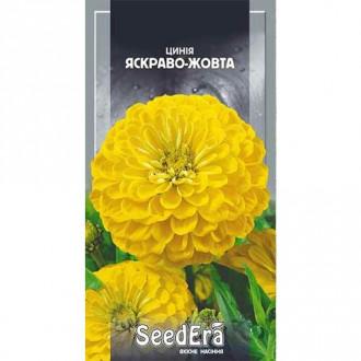 Цинния ярко-желтая Seedera рисунок 8