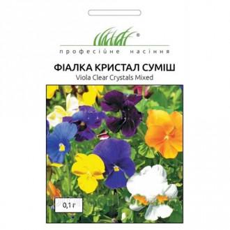 Фиалка Кристалл, смесь окрасок Профессиональные семена рисунок 5