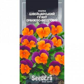 Фиалка Швейцарский гигант оранжево-фиолетовый Seedera рисунок 2
