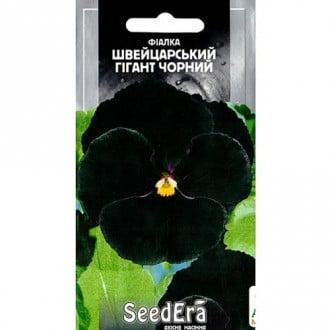 Фиалка Швейцарский гигант, смесь окрасок Seedera рисунок 4