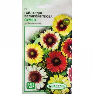 Гайлардія великоквіткова, суміш забарвлень Seedera зображення 2