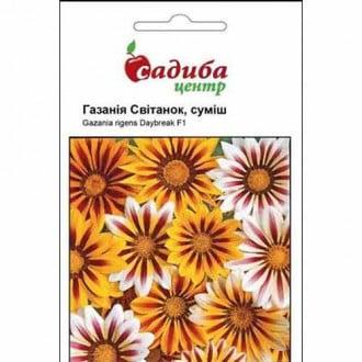 Газания Рассвет, смесь окрасок Садыба центр рисунок 7