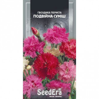 Гвоздика трав'янка Червона Seedera зображення 3