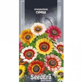 Хризантема, суміш забарвлень Seedera зображення 2